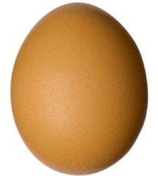 При ожогах можно использовать куриное яйцо